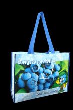 Big Shopper Blueberry